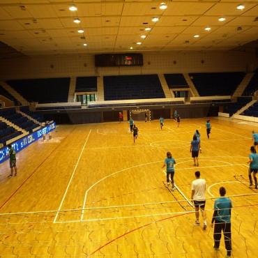 SISTEM PARDOSEALA SPORT CU CERTIFICARE FIBA - EHF